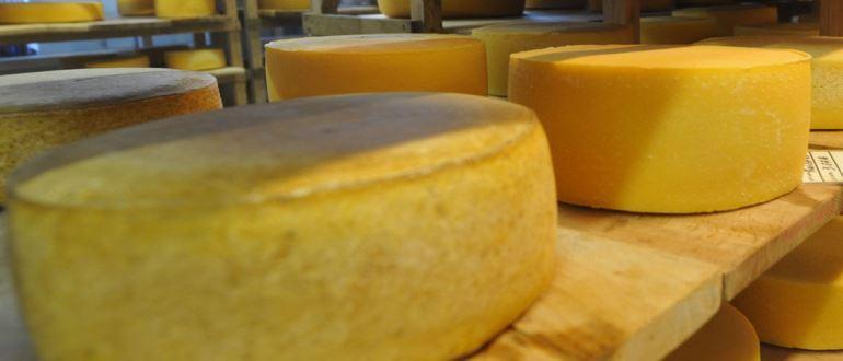 Как приготовить дома сыры- выбираем хорошую сыроварню