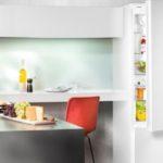 Самый лучший холодильник с функцией ноу фрост- выбираем