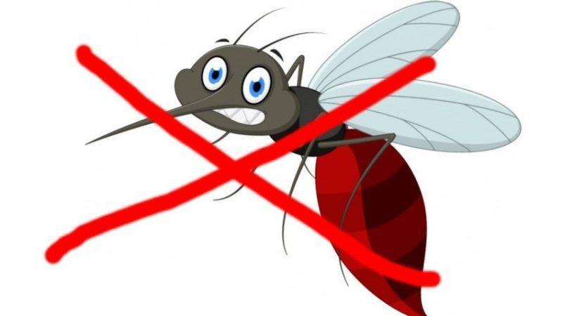 Как отпугивать комаров?