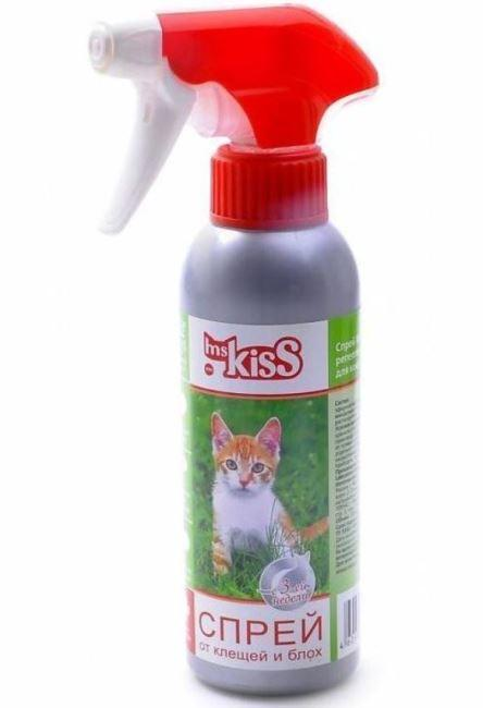 Ms. Kiss фото