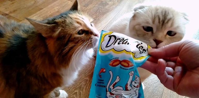 Dreamies для кошек