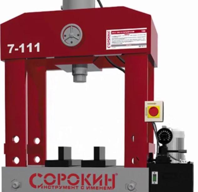 СОРОКИН 100 Т 7.111 фото