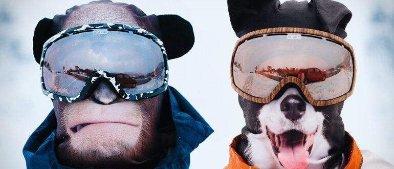 Рейтинг самых хороших горнолыжных масок