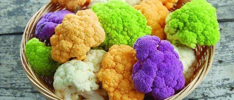 Обзор самых хороших сортов цветной капусты