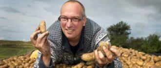 Обзор самых хороших сортов картошки