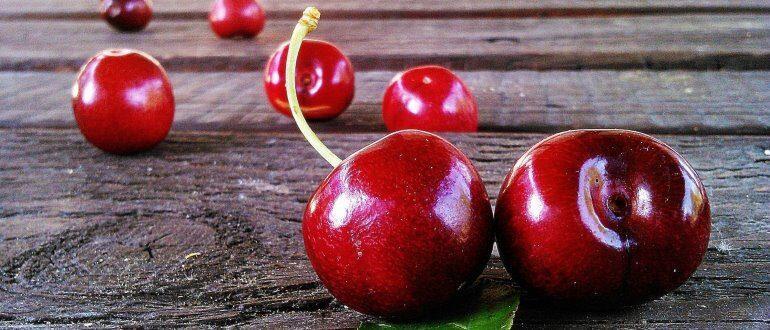 Обзор самых популярных сортов вишни